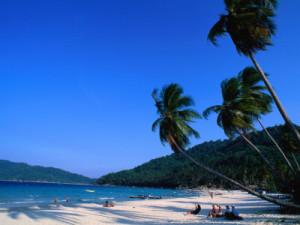 blomqvist-anders-palm-trees-on-long-beach-pulau-perhentian-kecil-malaysia