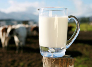 dairy-facts-fallacies_large