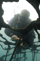 ARTificial-REEF-Lombok-May2014 056