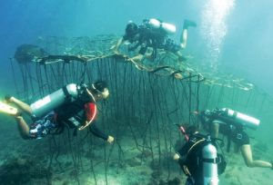 Restoring coral reefs through art initiative breathes new life into Senggigi Beach